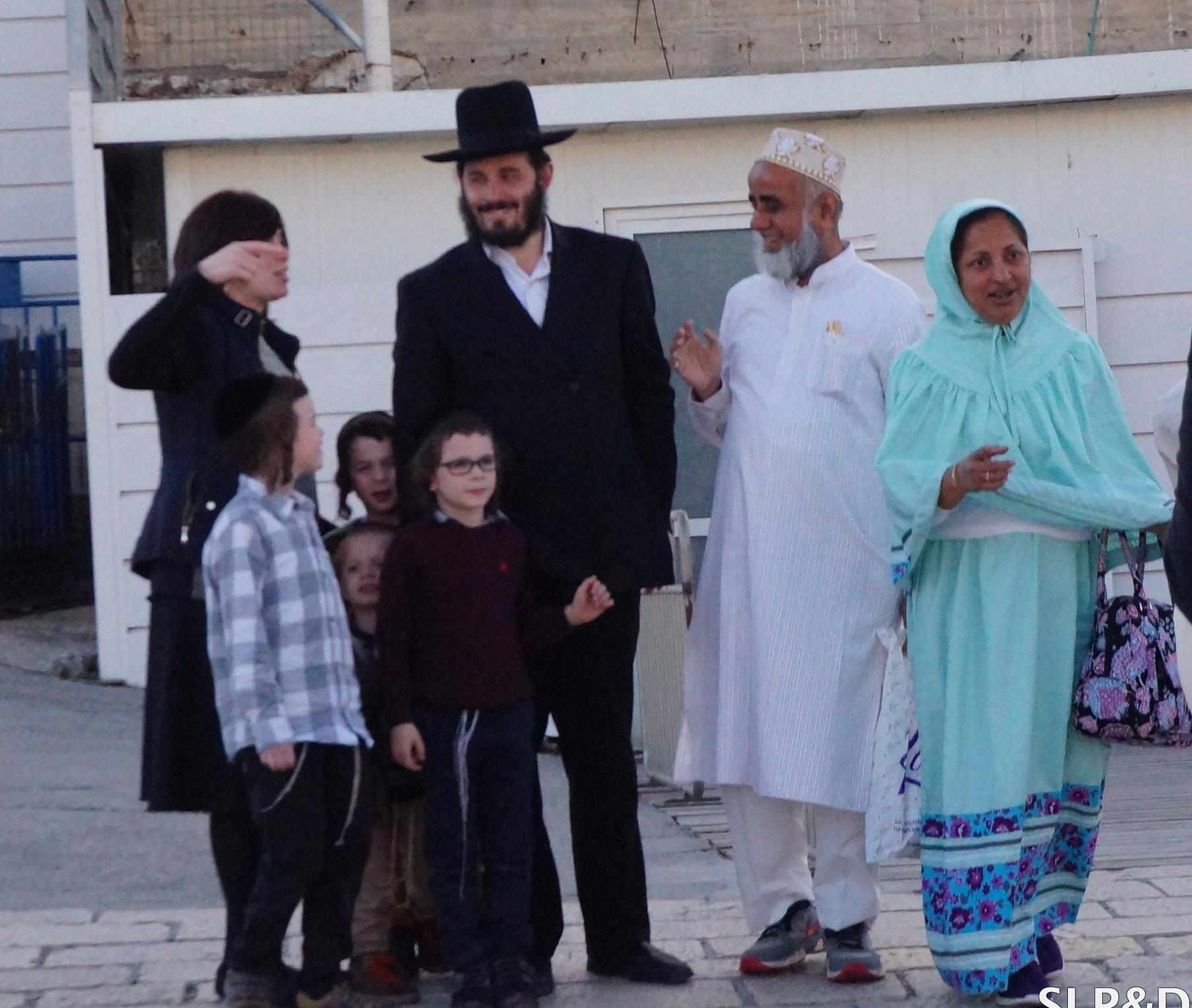 jewsandmuslims